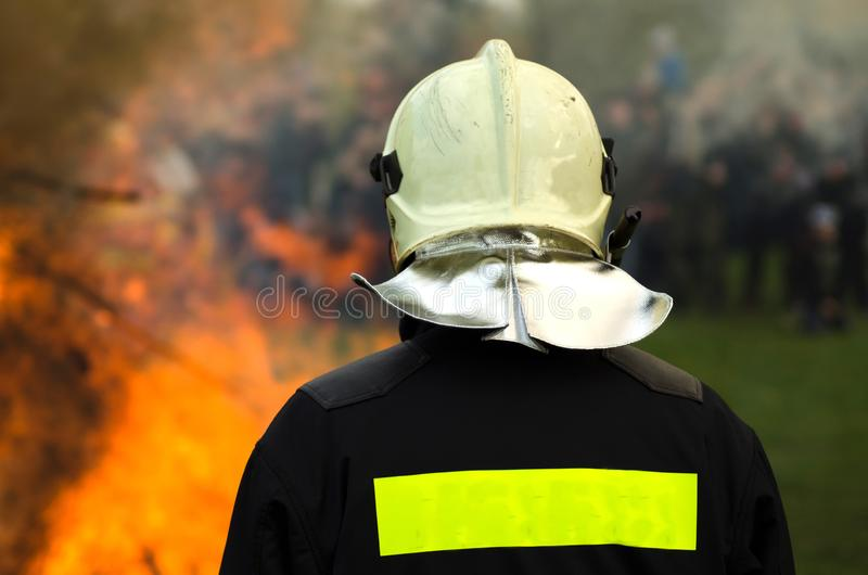 Fireman on the back of forest fire. Back view royalty free stock image