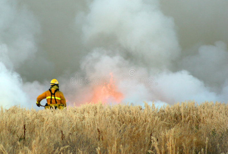 Download Fireman at work stock photo. Image of grass, dried, meadow - 2652378