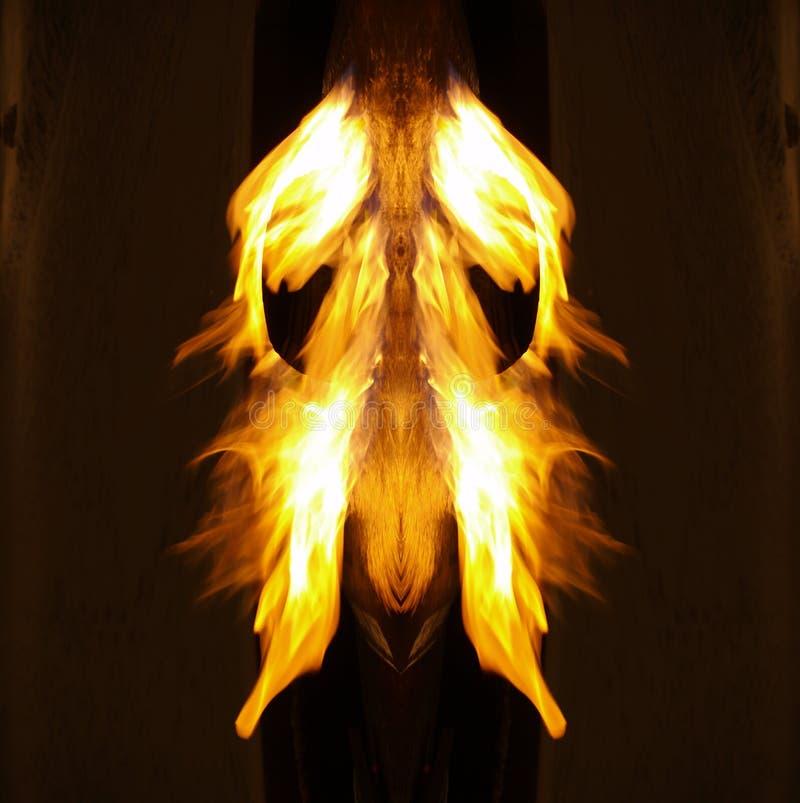 Firemoth? stock foto's