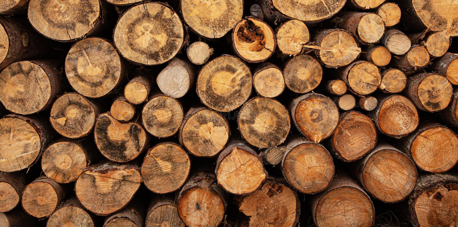 Fireplace wood logs texture stock photography