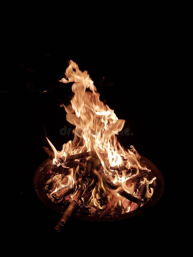 Firerwork obraz stock