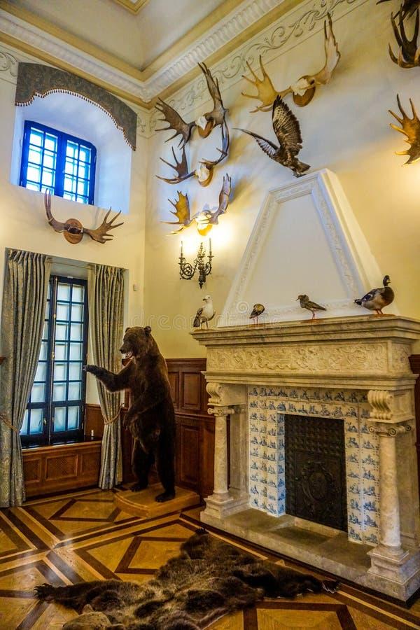 Fireside замка Nesvizh стоковая фотография