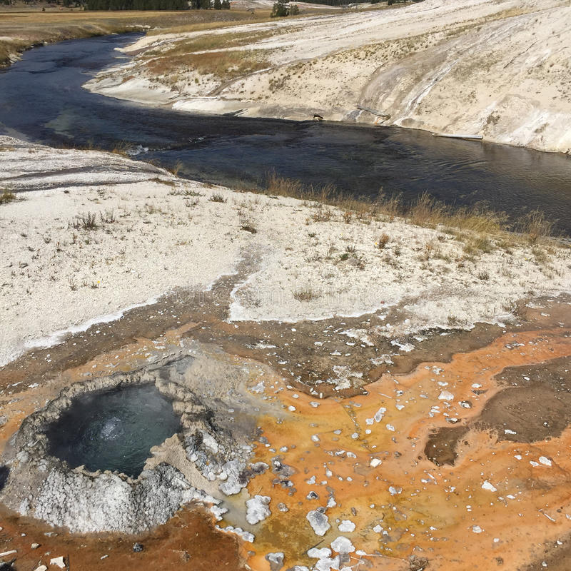 Firestone River Geyser. A boiling hot geyser with hot run off water turning the ground orange on the banks of the Firestone River that flows around Geyser Hill stock images