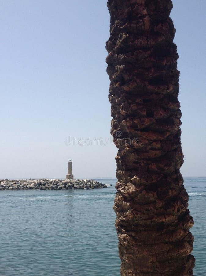 Firetower e palma fotografie stock