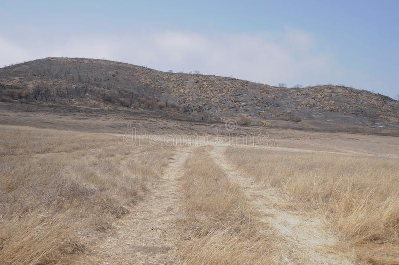 Firetrucks tracks at Satwiwa stock image
