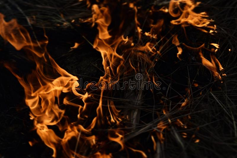 Fireup, brilho bonito do brilho brilhante, bonito foto de stock