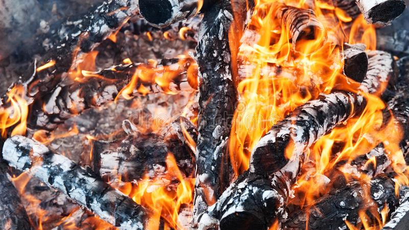 firewood foto de stock royalty free