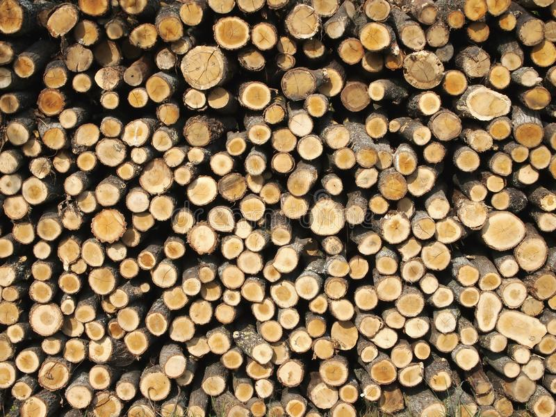 Download Firewood stock image. Image of firewood, many, firewoods - 21546549