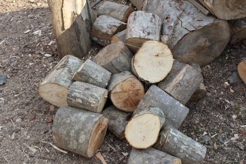 firewood fotografia stock