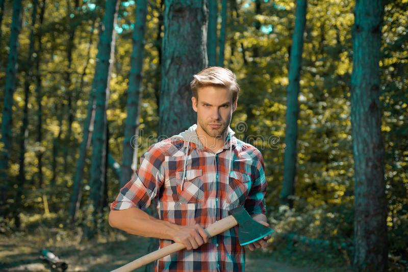 Firewood as a renewable energy source. Handsome Woodworkers lumberjack plaid shirt holding the axe on green nature. Background. Lumberjack worker standing in royalty free stock photo