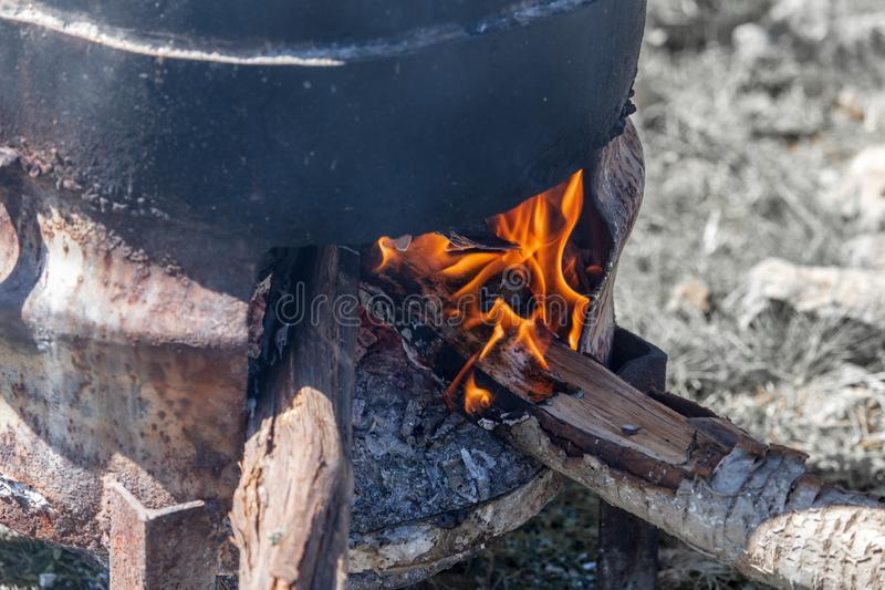 Firewood burns under the cauldron in nature stock photography