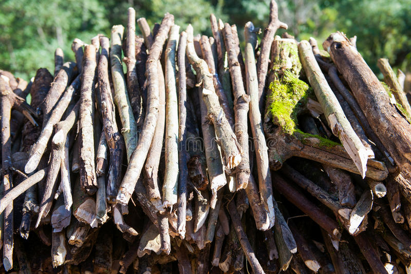 Firewood after finish hew raw material for fuel. Burn royalty free stock photo