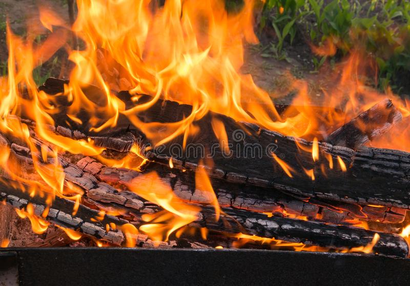 Firewood in fire close up. Bonfire closeup stock photography