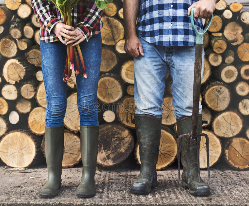 Firewood Fuelwood Lumber Timber Lumber Log Concept. Two people with a log wood behind royalty free stock photos