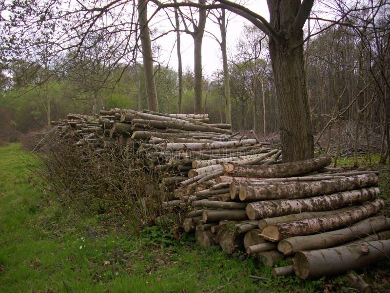 Firewood log stack royalty free stock photos