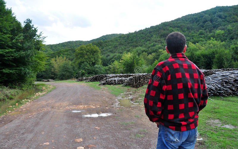 Firewood and Lumberjack. Firewood piled up near the dirt road in the woods and a lumberjack with flannel black and red checkered lumberjacket and blue jeans stock photos