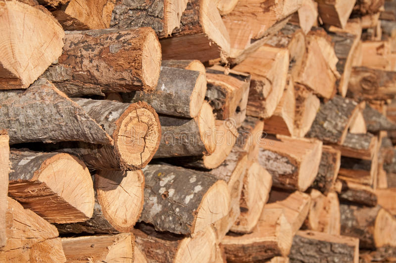Download Firewood stacked to dry stock photo. Image of hardwood - 26528346