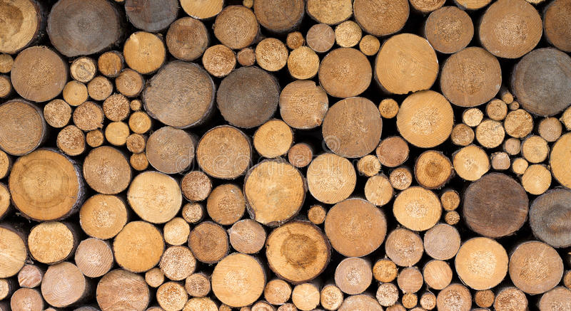 Firewood texture. Stack of fresh lamber firewood organized near a wall royalty free stock image