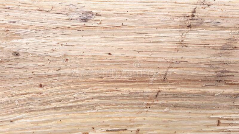 Firewood for winter royalty free stock photo