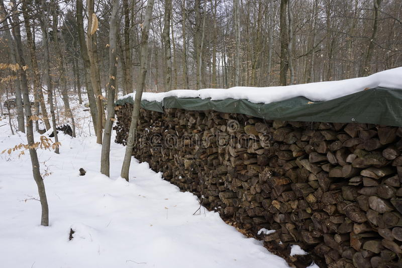 Firewood in winterly forest. Snow covered firewood in a winterly forest stock photography