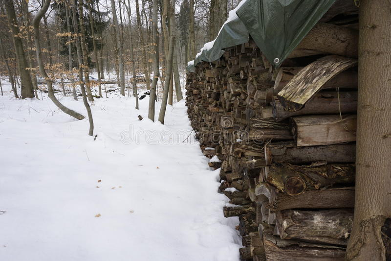 Firewood in winterly forest. Snow covered firewood in a winterly forest stock photos