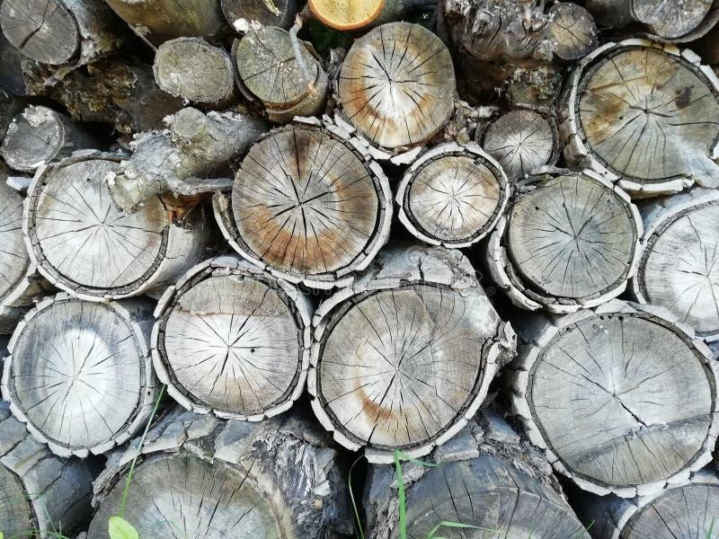 Firewoods in woodpile royalty-vrije stock afbeeldingen