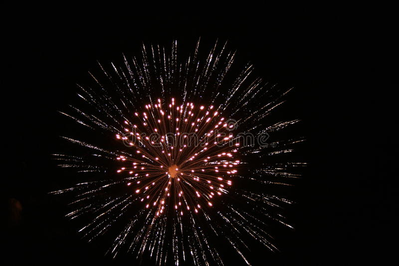 Firework 1. The Fourth of July 2007 royalty free stock photo