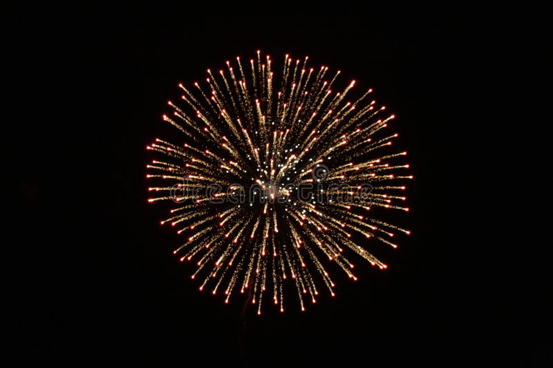 Firework 2. The Fourth of July 2007 royalty free stock photos
