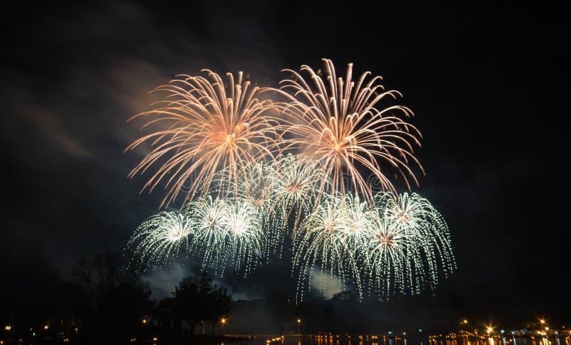 firework imagen de archivo libre de regalías