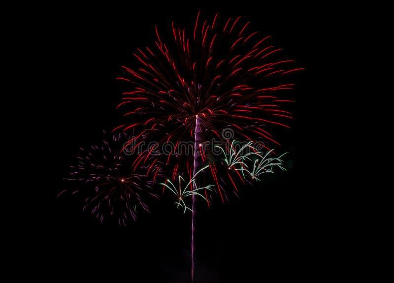 firework imagem de stock royalty free