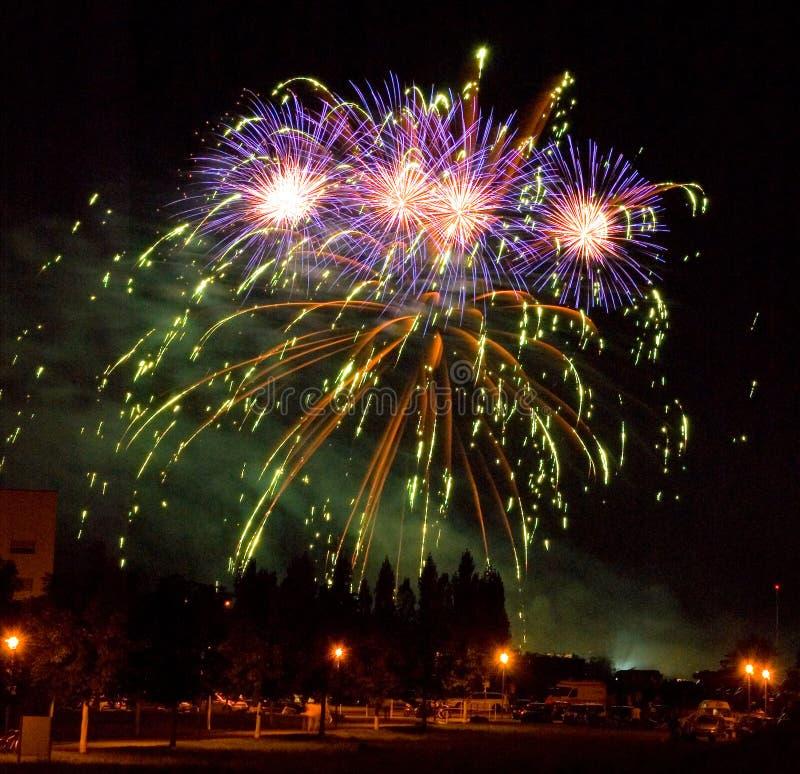 The Firework royalty free stock photo