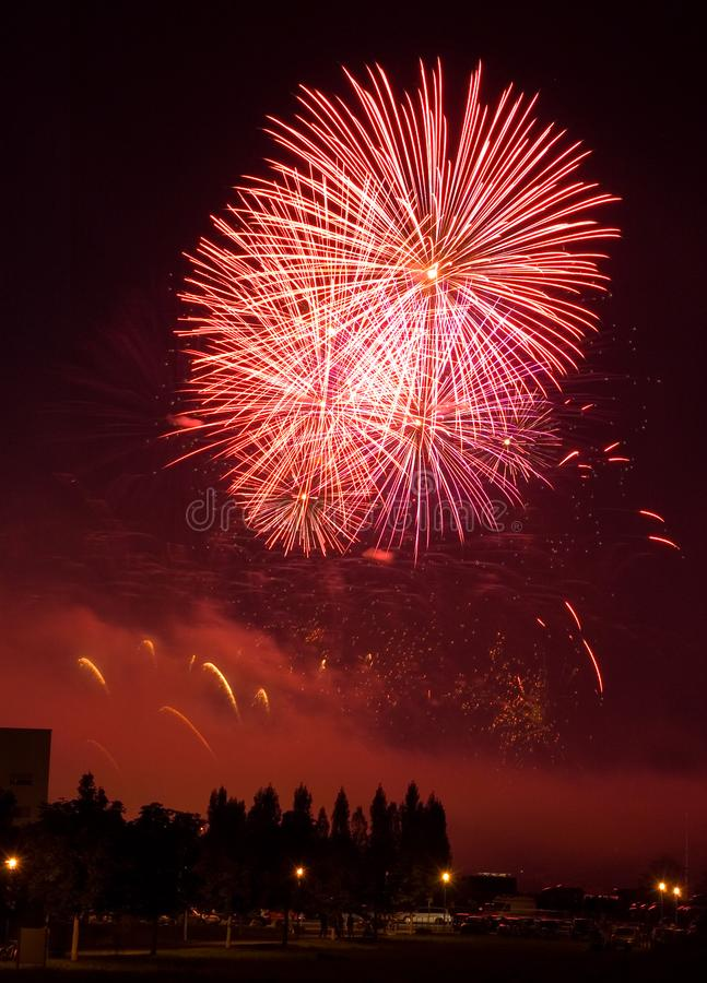 The Firework stock image