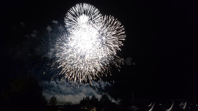 Firework -The Big Finale - Sparkling Showdown royalty free stock photography