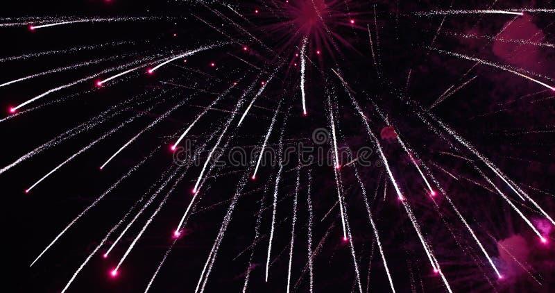 firework Fogo de artifício brilhante comemorativo em um céu noturno fotografia de stock royalty free