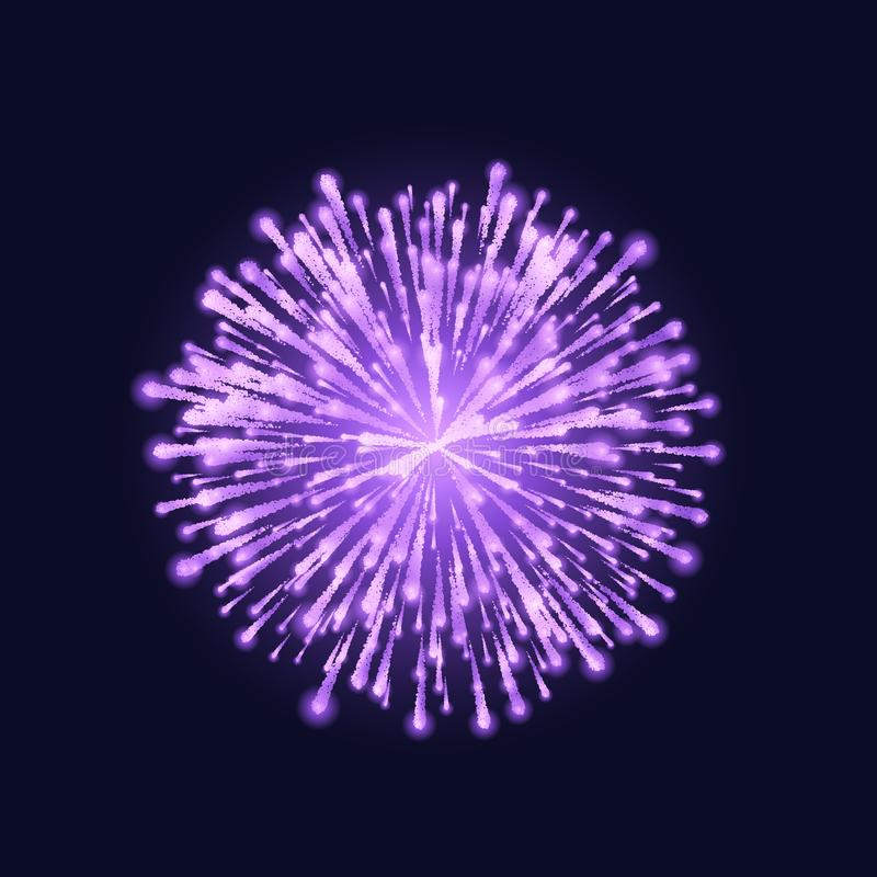 Firework isolated. Beautiful purple firework on dark sky background. Vector illustration.  vector illustration