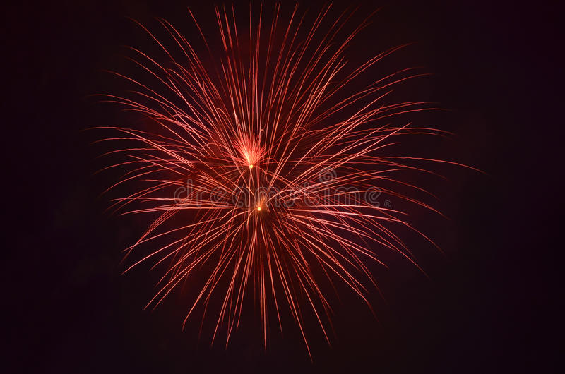 Download Firework in night sky stock photo. Image of colorful - 22743558