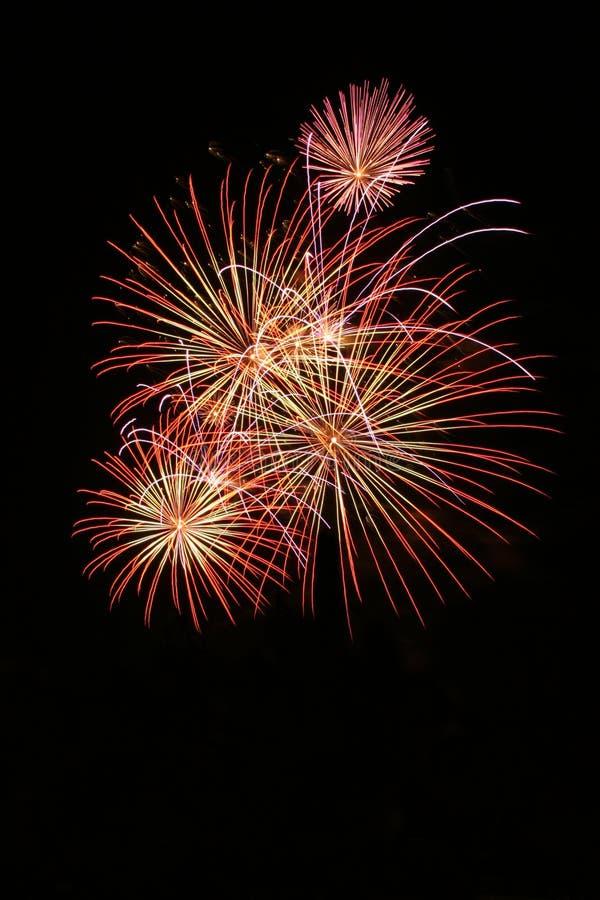 Free Fireworks. Royalty Free Stock Photo - 1002695