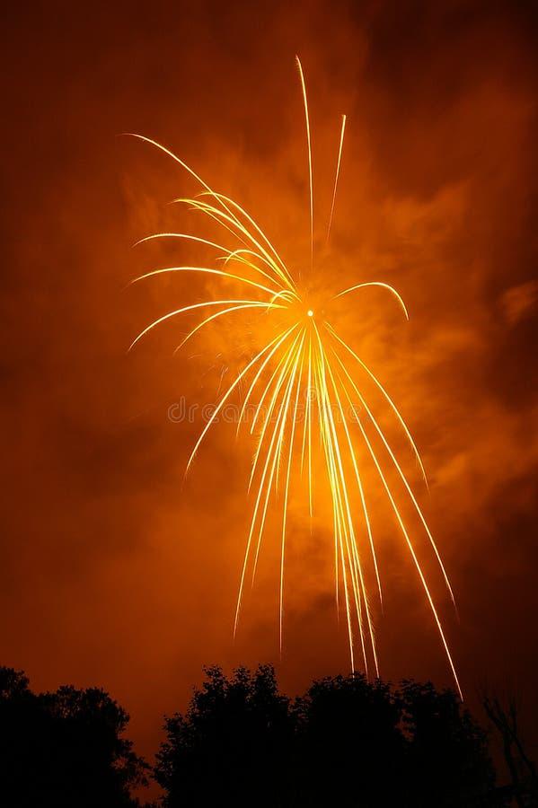 Free Fireworks Royalty Free Stock Photo - 2711535