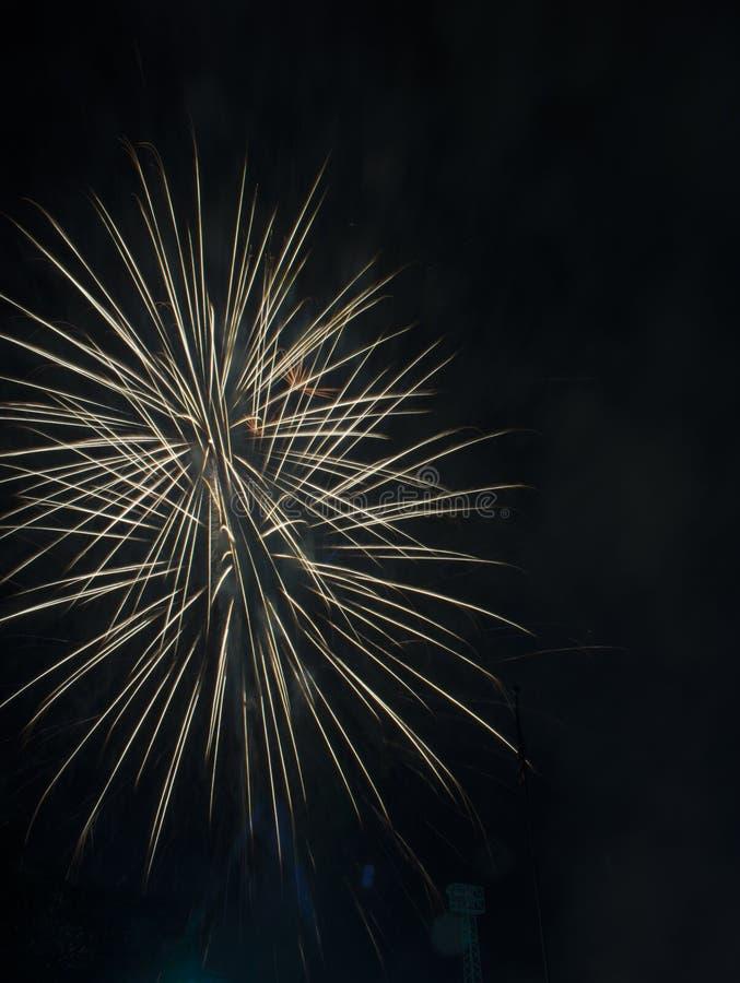 Fireworks burst on a black sky stock photos