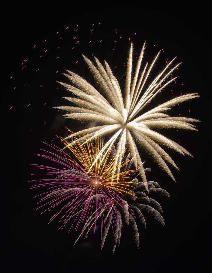 Free Fireworks Celebration Royalty Free Stock Images - 25803179
