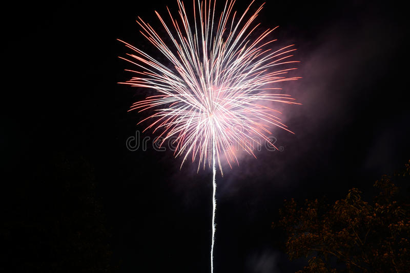 Fireworks display against a black background. royalty free stock photo