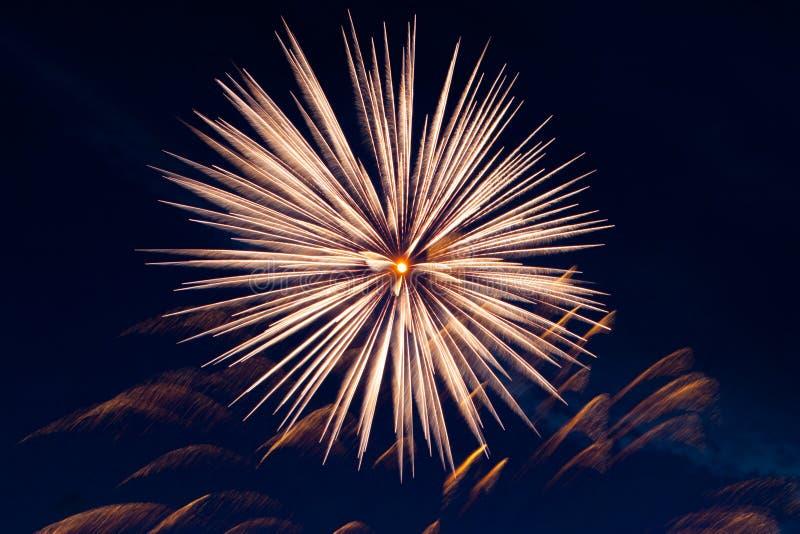 Fireworks display. Fireworks display against dark sky royalty free stock images