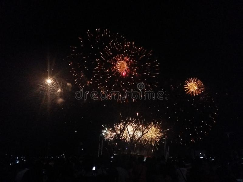 Fireworks display: as branches to the trees royalty free stock photo
