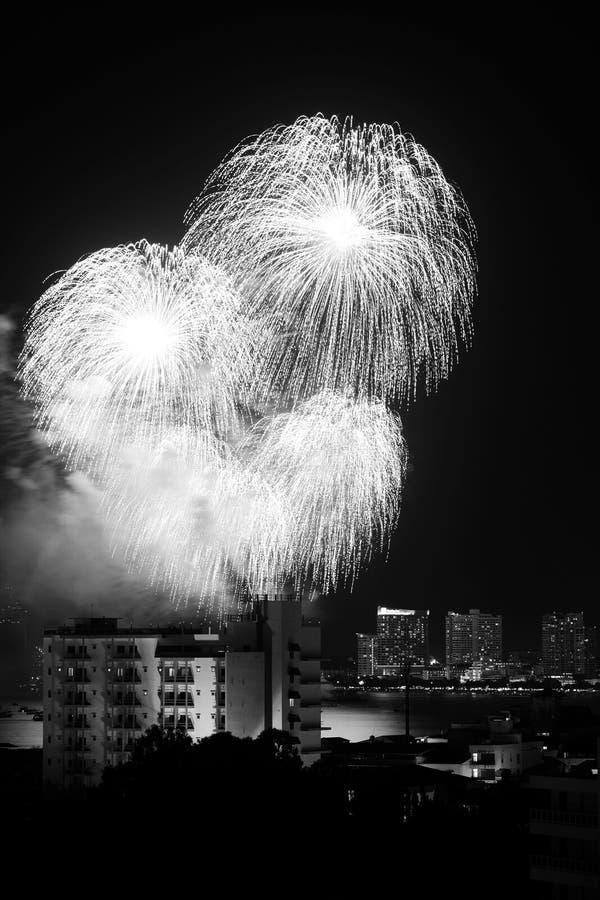 Download Fireworks Exploding stock photo. Image of festival, celebration - 16924396