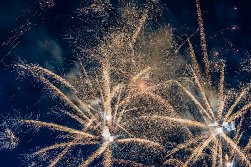 Fireworks. In night sky.  bursting stock images