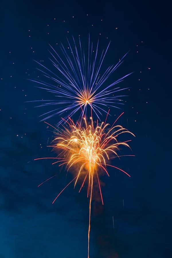 Free Fireworks - Flower Stock Photos - 5156013
