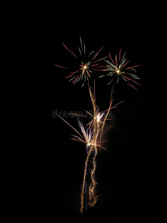 Fireworks Flowers Stock Photos