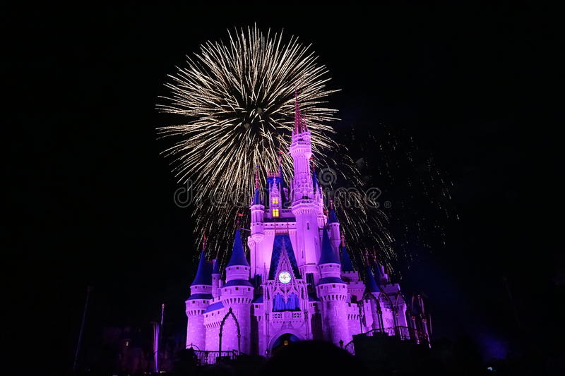Fireworks in Magic Kingdom. Day in Magic Kingdom park royalty free stock photos