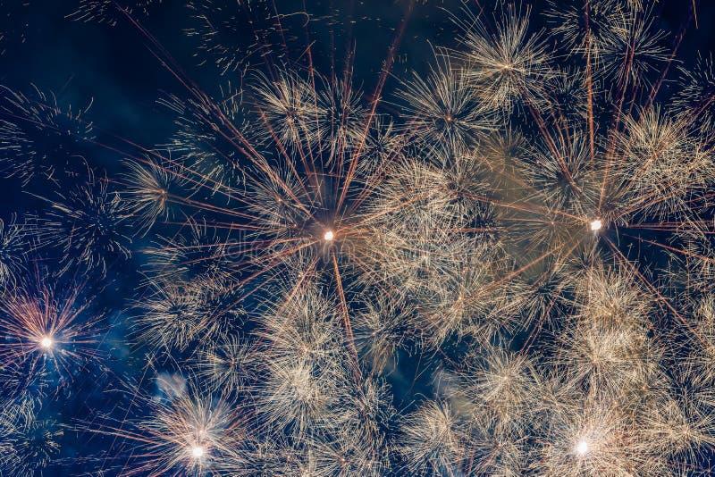 Fireworks. In night sky.  bursting stock photo