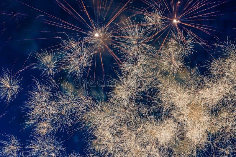 Fireworks. In night sky.  bursting royalty free stock photo